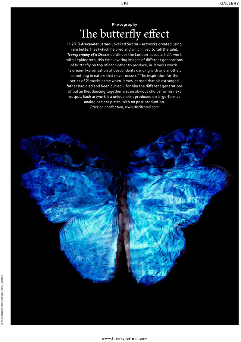 'The butterfly effect' article in Christie's Magazine Published August 2016