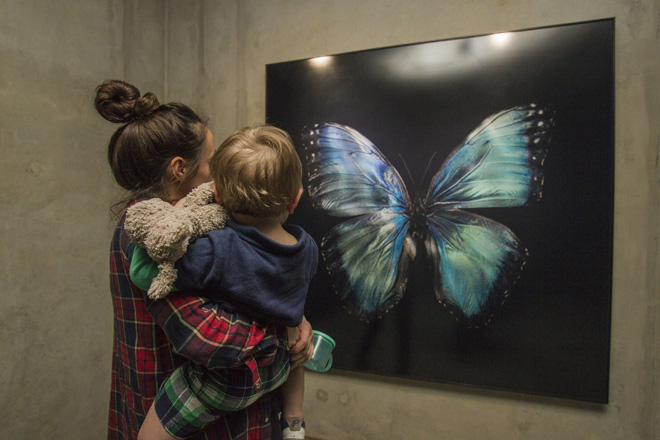 a mother with cild viewing artwork in the exhibition underwater butterfly museum framed