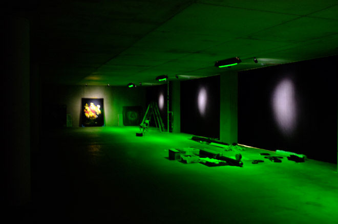 underwater photographer working to create Vanitas exhibition that look like paintings Intersection