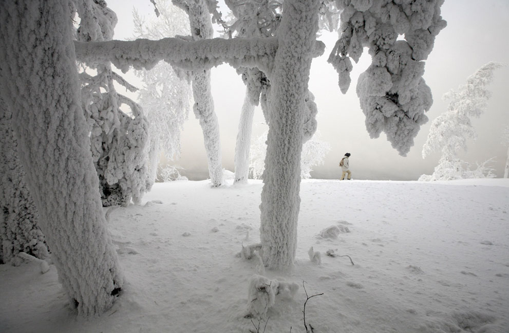 artist creates & installs sculptures in the forests of Siberia during a harsh winter from oil and water