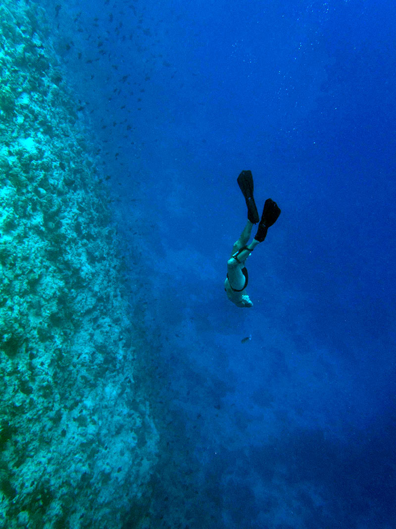 artist Alexander James Hamilton seen here free diving a wall in Baa Atol Maldives where the artist created many of his underwater sculptures